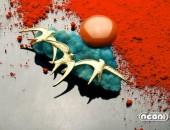 Spilla oro giallo con emimorfite e corallo | Negri Gioielli Roma 100% Artigianali | handmade jewellery